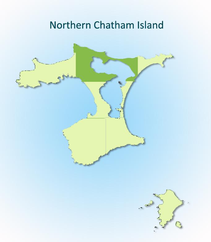 Northern Chatham Island