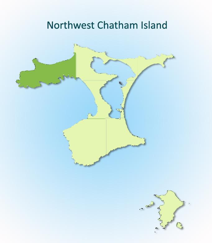 Northwest Chatham Island