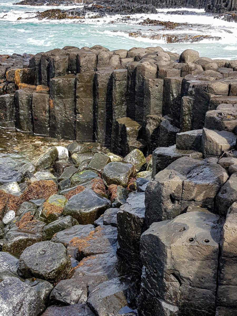 Basalt Columns, Ohira Bay, Chatham Island