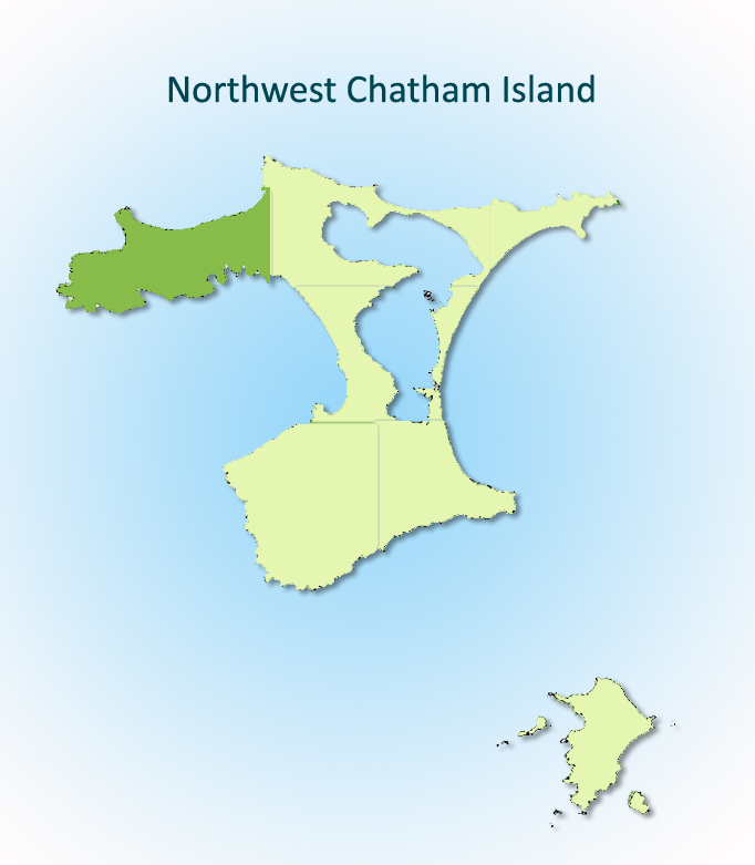 Northwest Chatham Island