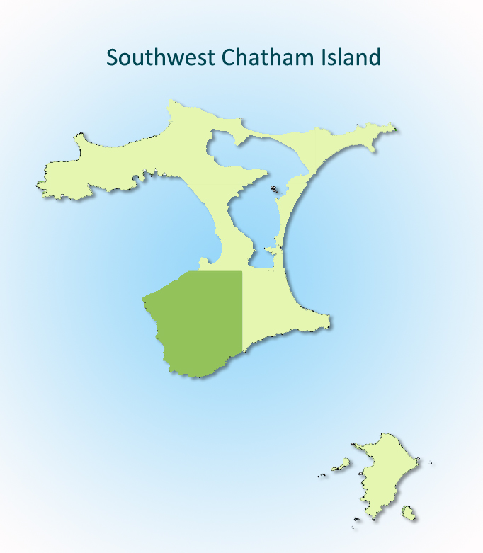 Southwest Chatham Island