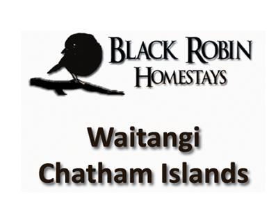 Black Robin Homestays